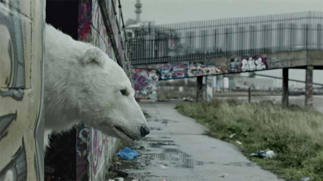 Greenpeace - Un ours polaire sans abri à Londres