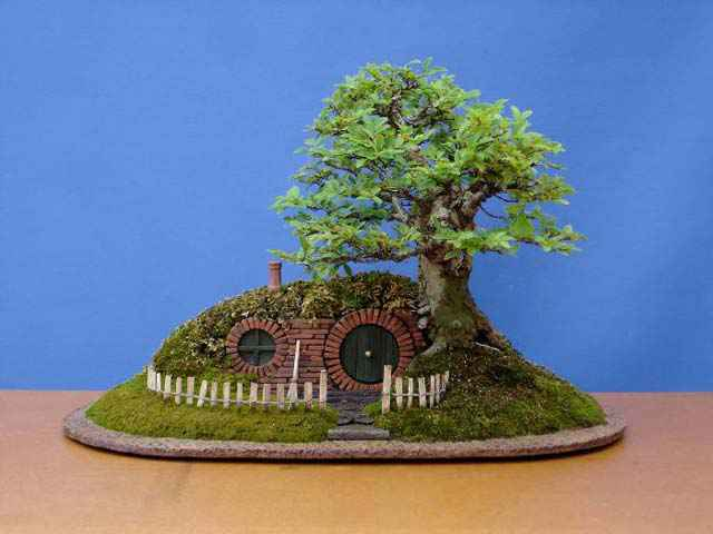 004-hobbiton-bonsai-trayscape