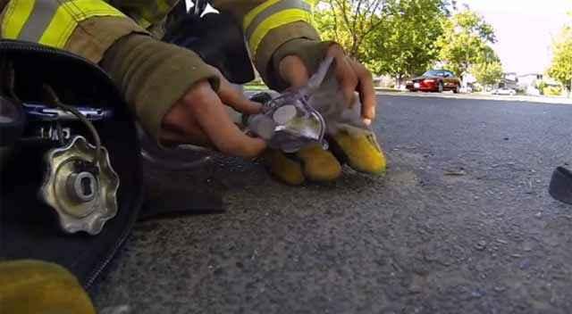 GoPro - Un Pompier sauve un chaton