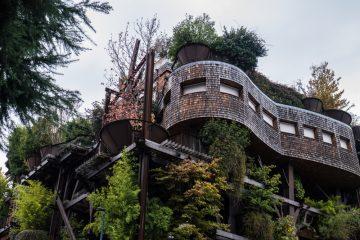 25 Verde - L'incroyable maison dans les arbres