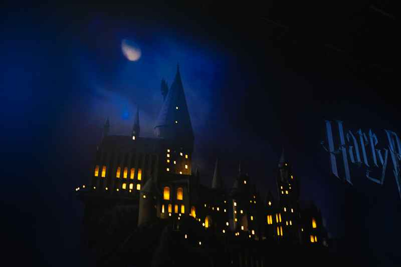 Exposition_Harry_Potter_3