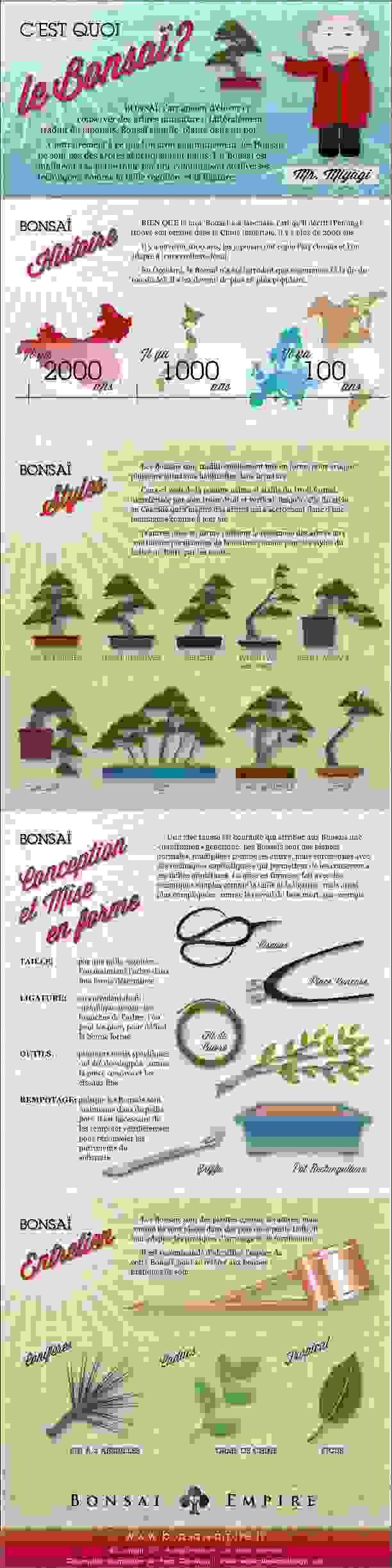 bonsai-infographie-mr-miyagi-neozone-2016