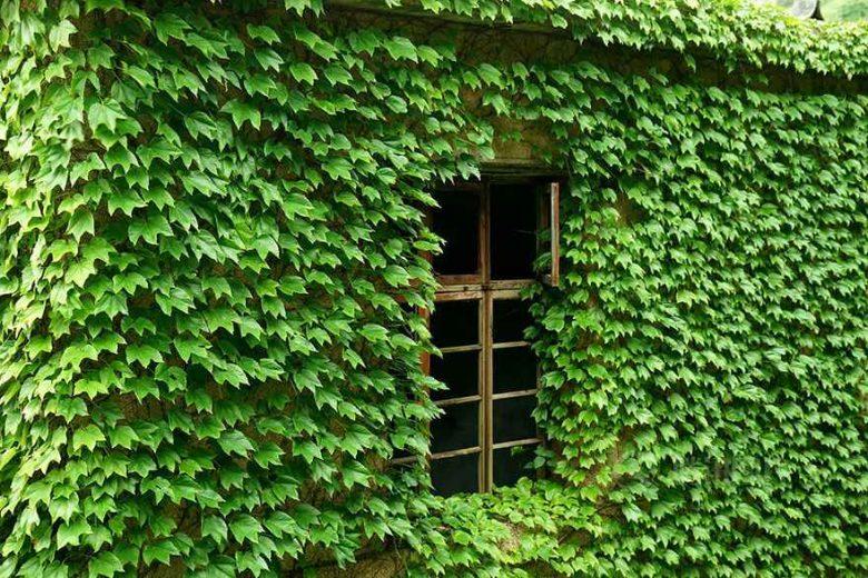 village-pecheur-abandonne-chine-008
