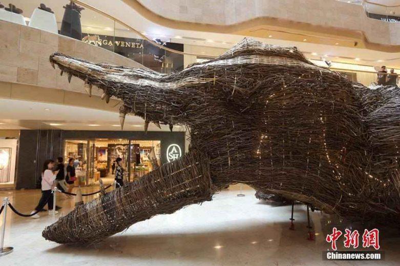 crocodile-rotin-21m-chine-002