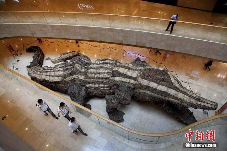 crocodile-rotin-21m-chine-004