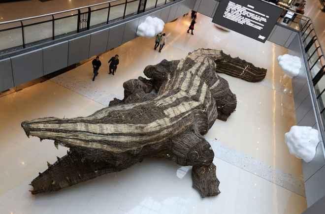 crocodile-rotin-21m-chine-006