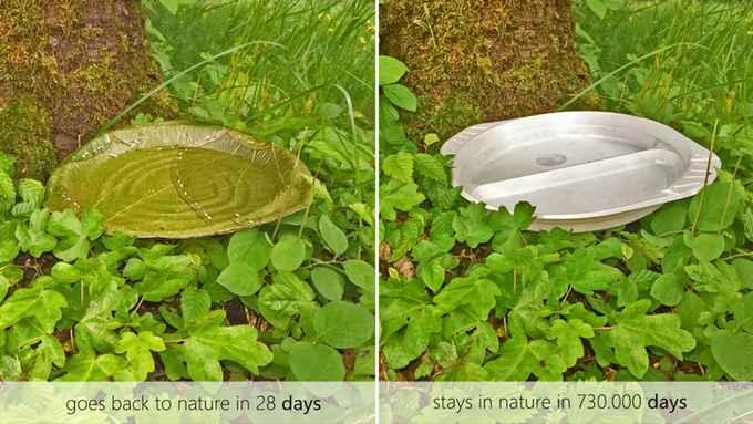 leaf-assiette-jetable-02