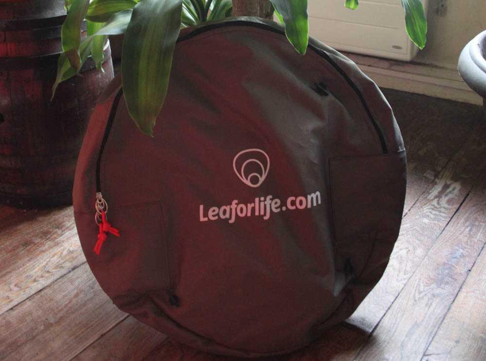 leaf-for-life-006