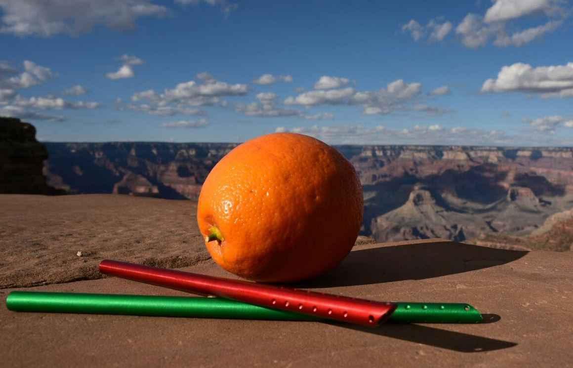 mr-orange-paille-fruit-002