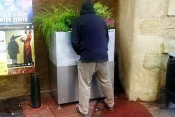 Des urinoirs pour faire pousser des fleurs