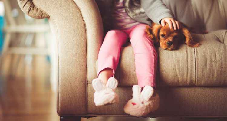Emprunte mon toutou : chien heureux, maître tranquille