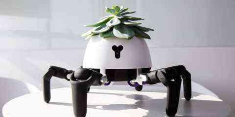 Ce robot prend soins de la plante qu'il balade sur son dos