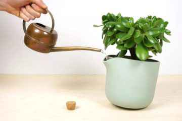 Natural Balance, un ingénieux pot de plante auto-arrosant
