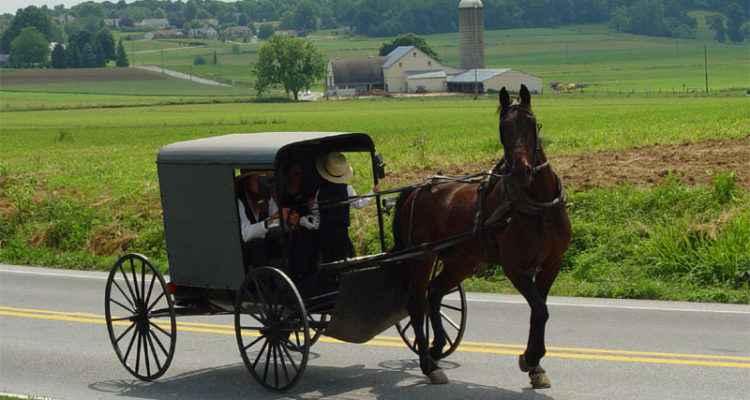 Uber Amish