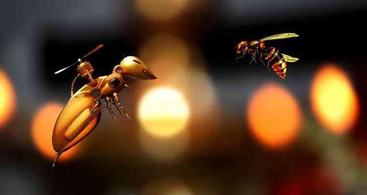 abeille robot