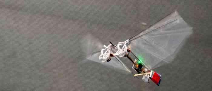 Une entreprise dévoile un drone pour remplacer les insectes pollinisateurs