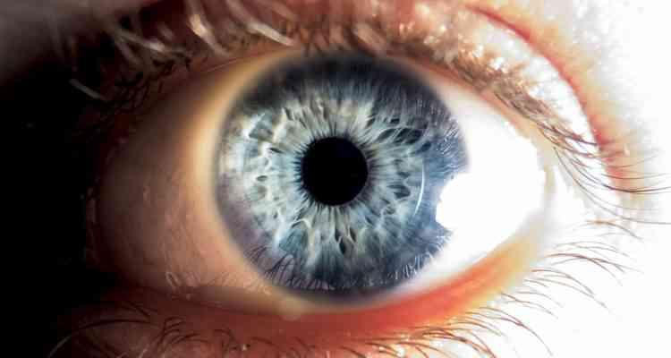 Des robots microscopiques pour soigner les maladies oculaires