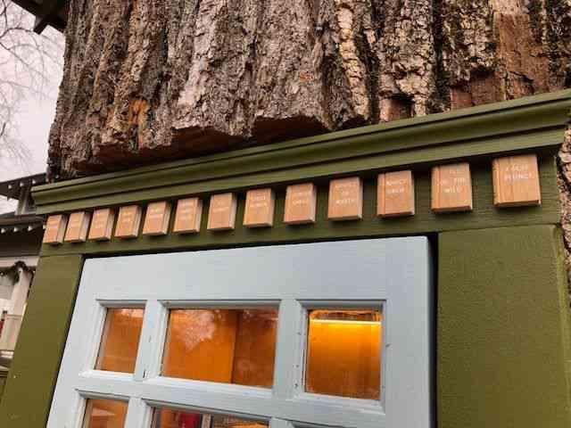 Une boîte à lire au cœur d'un arbre centenaire