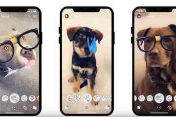 Snapchat lance des filtres pour les chiens !