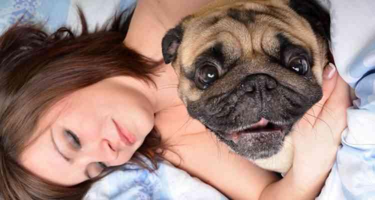 D'après une étude américaine, une femme dort mieux avec un chien qu'avec un homme
