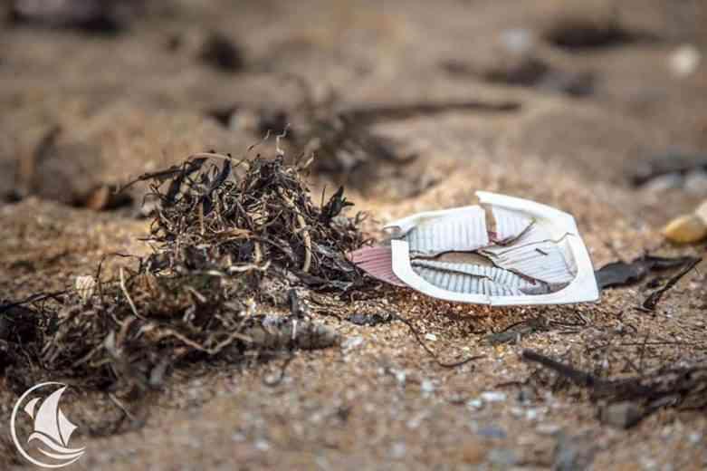 Kraken, le trois-mâts français en expédition pour dépolluer les océans