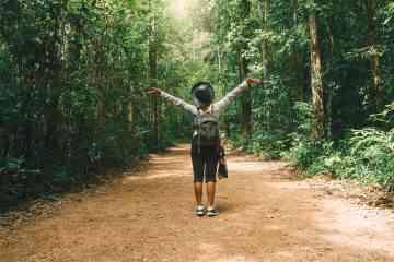 """Pour régénérer ses forêts, la Thaïlande """"bombarde"""" par avion des centaines de milliers de graines"""