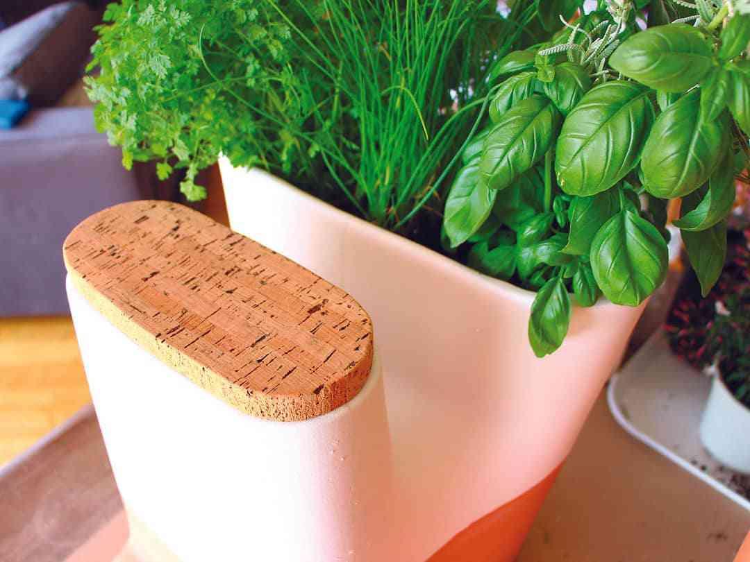 Decoration Petit Pot De Fleur transfarmers, le pot de fleurs composteur - neozone