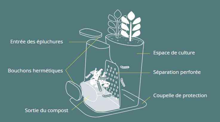 Transfarmers, le pot de fleurs composteur
