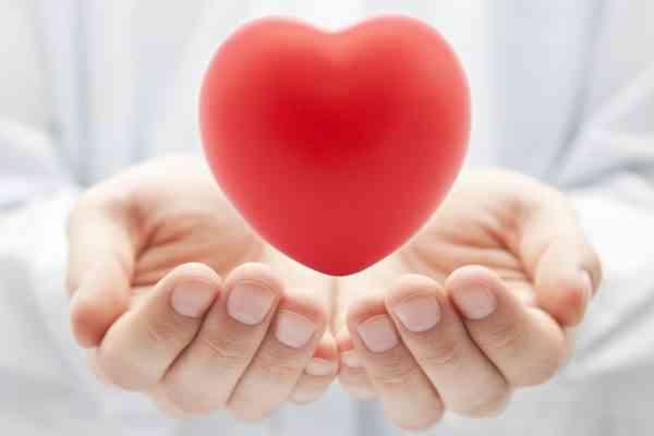 """Cette machine permet de garder un cœur """"vivant"""" pendant son transport, jusqu'à sa transplantation"""