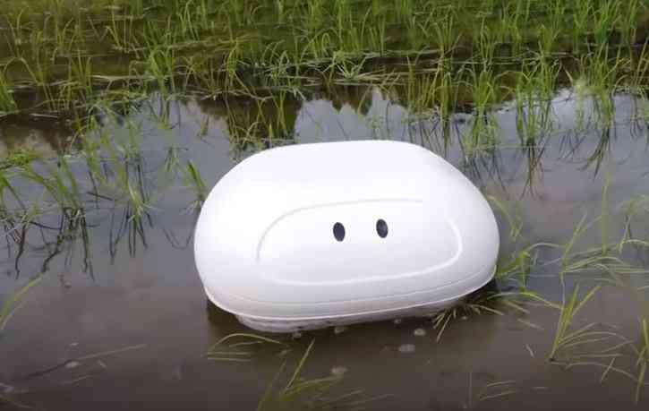Ce robot est aussi efficace qu'un canard pour entretenir les rizières