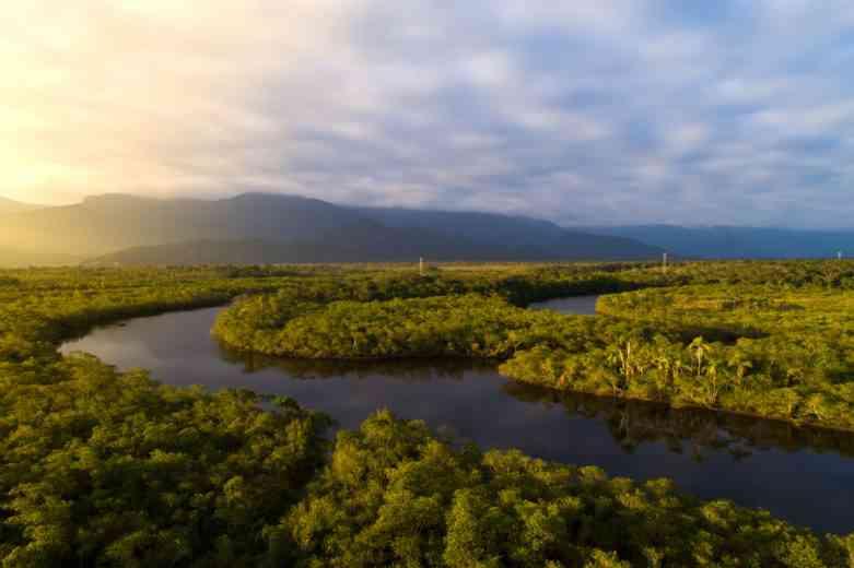 Une tribu amazonienne publie une encyclopédie recensant les bienfaits des plantes médicinales...