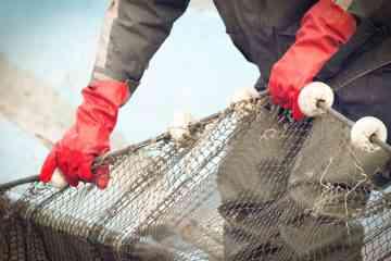 Pêche durable : Cette entreprise propose des filets de pêche 100% biodégradables, en amidon de maïs