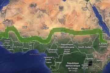 Afrique : un mur d'arbres de 8000 km pour lutter contre les effets du changement climatique et de la désertification
