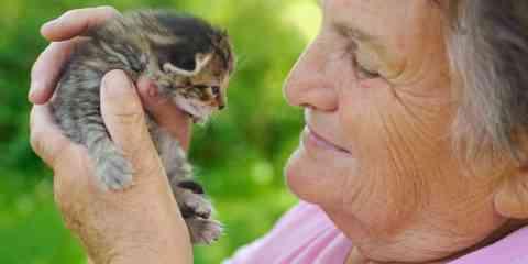 Ehpad : les personnes âgées pourront (bientôt) garder leur animal