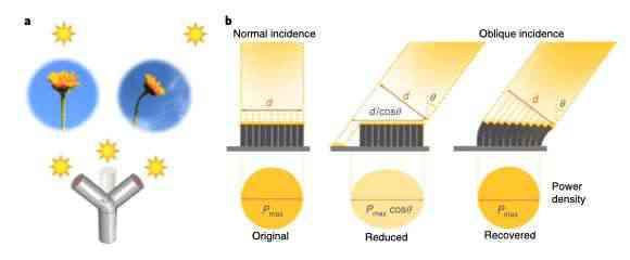 """SunBOT, des """"mini-tournesols"""" artificiels qui s'orientent vers le soleil pour optimiser les panneaux solaires"""