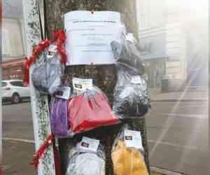 Solidarité : des arbres à écharpes et à manteaux pour aider les personnes dans le besoin...