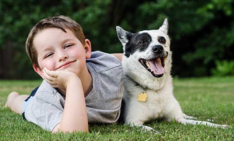 Autisme : la présence d'un chien d'éveil aurait de nombreux effets bénéfiques sur les enfants