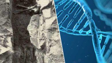 Photo de Grâce aux analyses ADN, on sait maintenant qui est le « vampire du Connecticut »