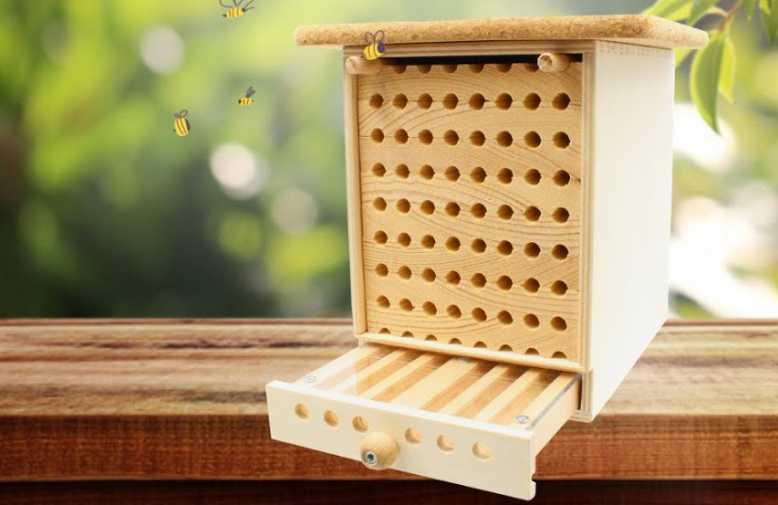 Devenez un Dorloteur d'Abeilles avec une maisonnette à abeilles sauvages