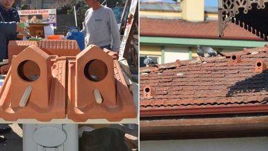 """Une entreprise Turque fabrique des """"tuiles-nids"""" pour étudier et protéger les oiseaux des villes"""
