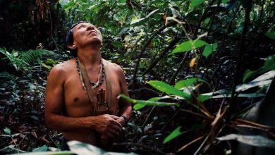 Photo de Brésil : face à l'ampleur de l'épidémie, les indigènes Satéré Mawé optent pour les remèdes ancestraux pour lutter contre le coronavirus