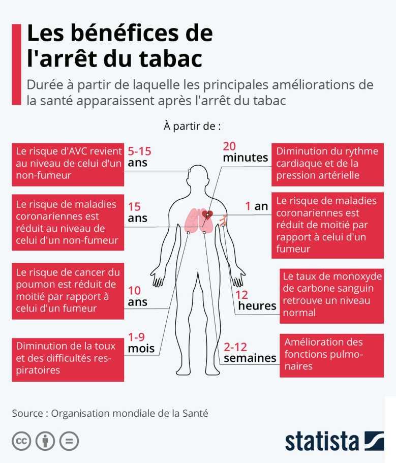 Les premiers bénéfices de l'arrêt du tabac apparaissent au bout de 20 minutes, les derniers entre 10 et 15 ans !