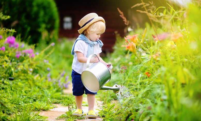 Comment économiser l'eau dans son jardin ? Bon pour le portefeuille et bon pour la planète !