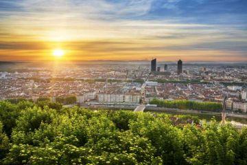 Lyon : 6000 arbres vont être plantés pour créer une forêt de 1000 m² dans la ville