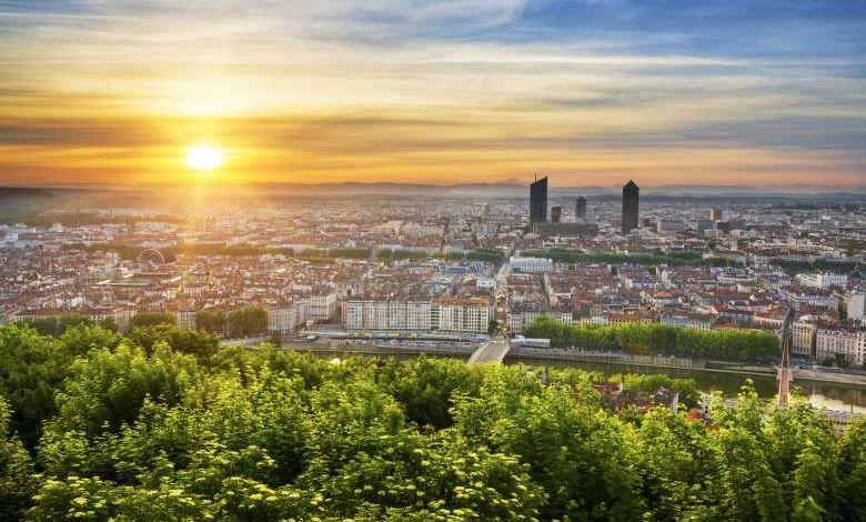 Lyon : 6000 arbres vont être plantés pour créer une forêt de 1000 m² en pleine ville