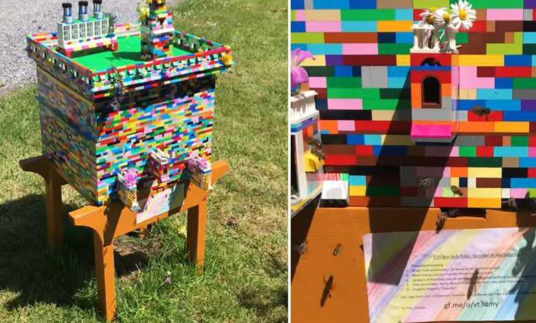 Un apiculteur irlandais construit une étonnante ruche en LEGO, adoptée par plus de 30 000 abeilles