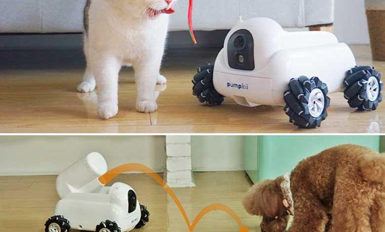 Pumpkii : un robot de compagnie pour votre animal de compagnie (il nettoie aussi la litière de votre chat)