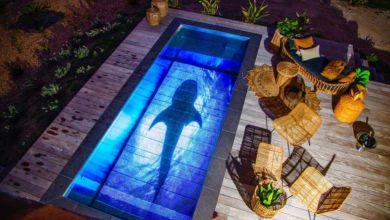 Photo de La société Pooloop transforme votre piscine en écran géant !