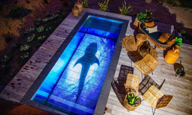 La société Pooloop transforme votre piscine en écran géant !