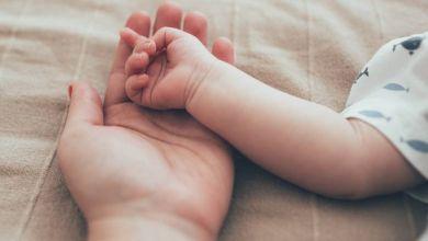 """Très courantes au Moyen-Age, les boîtes à bébés pour """"sécuriser les abandons"""" réapparaissent en Europe"""